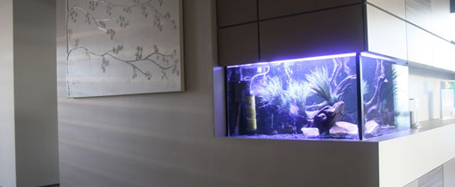 services-aquarium
